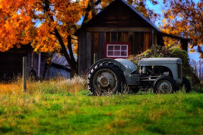 Autumn Farm
