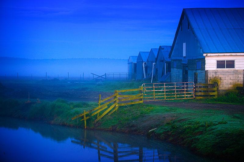 Blue_Barns