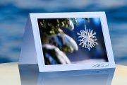 Giant Snowflake_prod