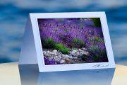 Lavender Wrought Iron_prod