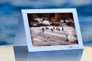 Pond Hockey_prod
