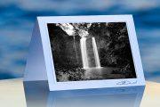 Whangrei Falls_prod