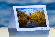 Blazing Pond_prod