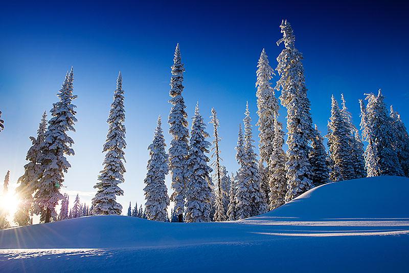 alpine-afternoon