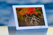 Crimson Fence_prod