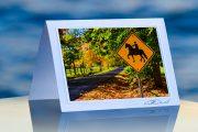 Horse Crossing_prod