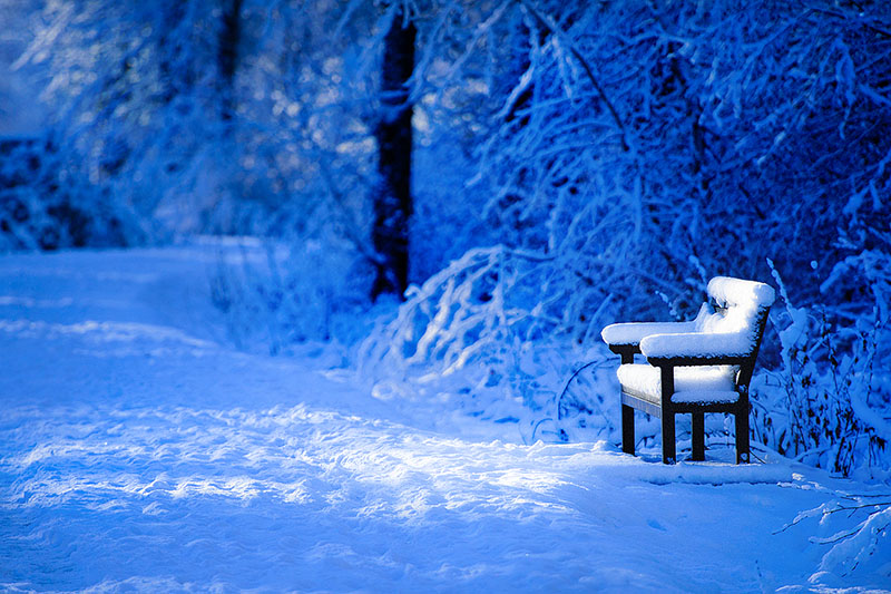 Bench in Blue