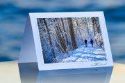 Winter Walk_prod