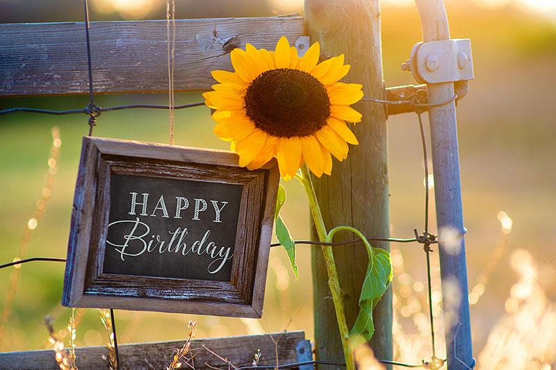Sunny Birthday