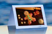 Gingerbread Man_prod